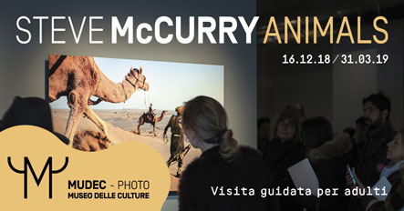 McCURRY_VisitaGuidata2_1200x628
